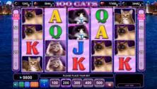 100 Cats Online Slot