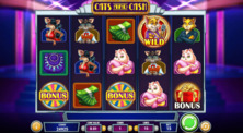 Cats And Cash Online Slot
