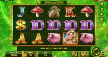 Fortune Girl Online Slot