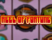 Reel Of Fortune Online Slot