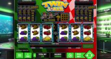 Twin Joker Online Slot
