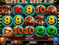 Wild Hills Online Slot