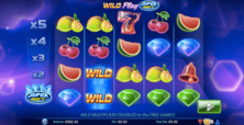 Wild Play Online Slot