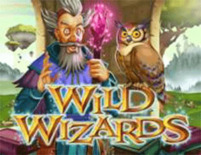 Wild Wizards Online Slot